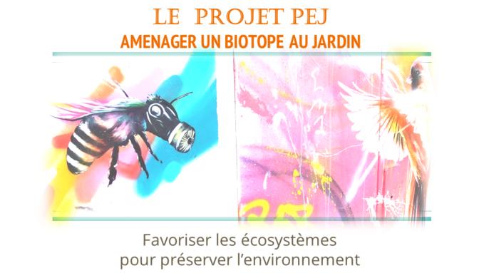 Images graphiques/ illustration pour le projet PEJ : aménager un biotope...
