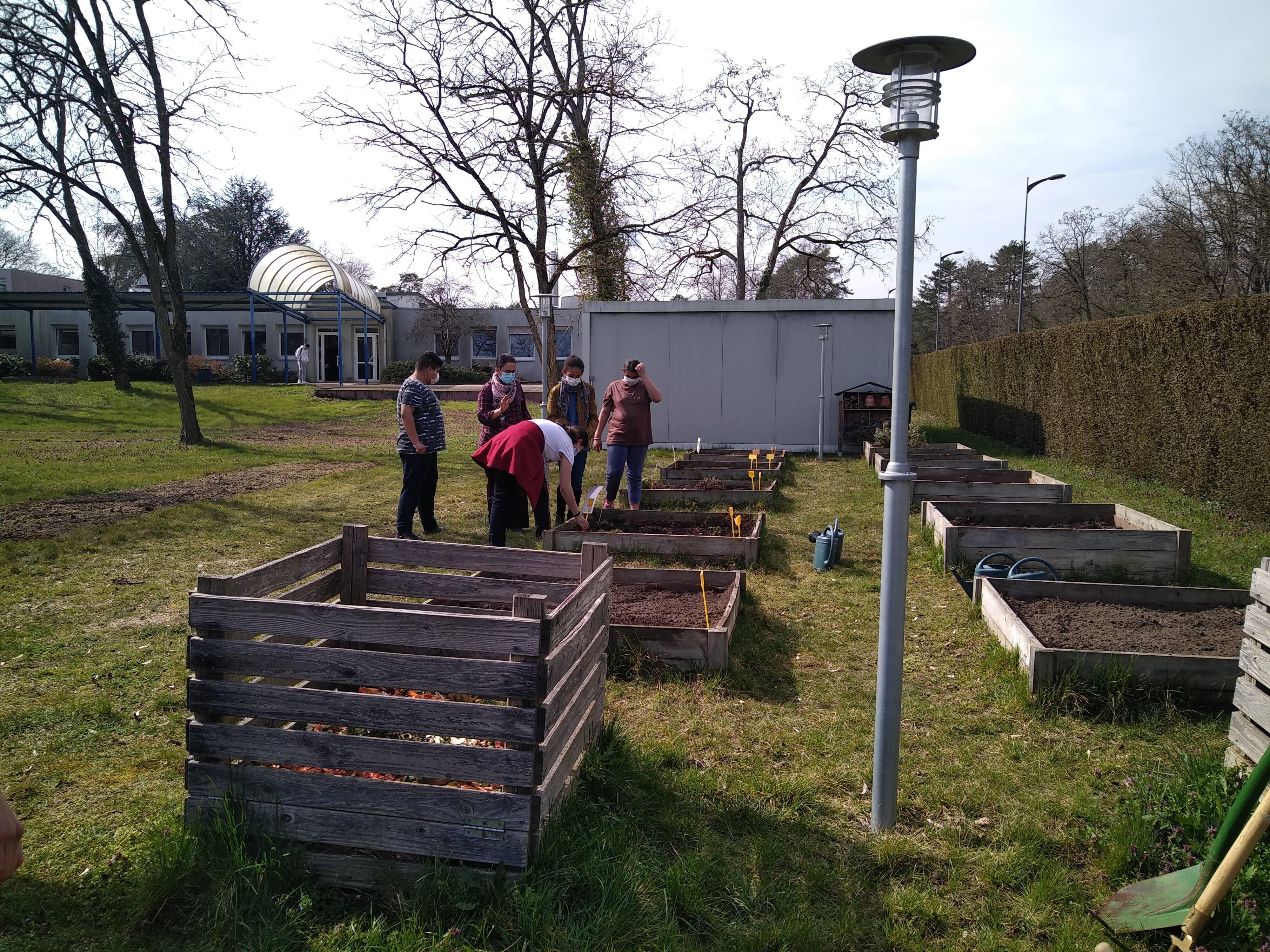 Les jardinières de la cité scolaire (les élèves en plein travail)